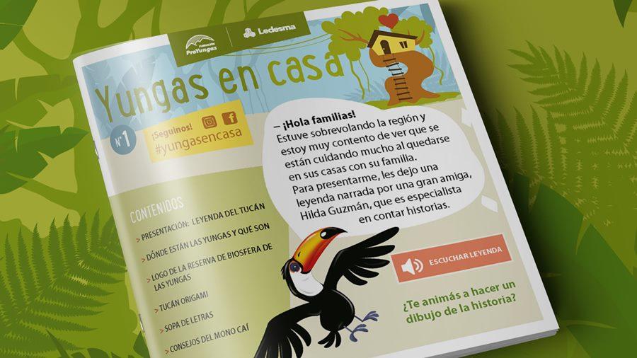 #Yungasencasa revista digital Ledesma y Proyungas