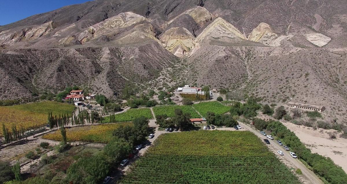Bodega Fernando Dupont panoramica